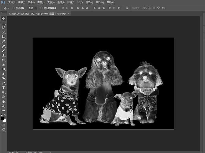 PS快速把照片处理成素描的效果
